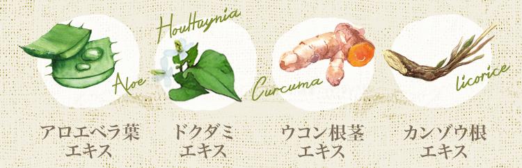 植物成分:アロエベラ葉エキス・ドクダミエキス・ウコン根茎エキス・カンゾウ根エキス